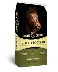 Solutions 10 Textured Horse Feed