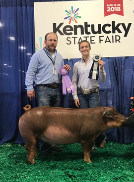 cKenzie McCoy, Grand Champion, Kentucky State Fair