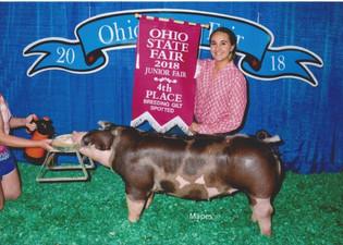 Kayla Barker, 4th Overall Spot Breeding Gilt, Ohio State Fair