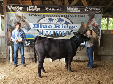 Abigail Miller, Reserve Champion Heifer,