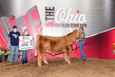 Mckalynne Helmke, Reserve Charolais, Ohio Youth Livestock Expo
