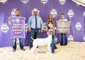 Avery Darroow, Reserve Champion Goat Mic