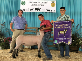 Luke Schroeder, Grand Champion Lamb, Def