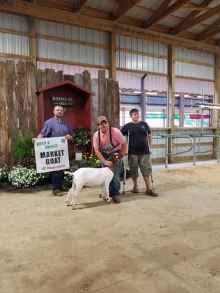 Clayton Schwab, Grand Champion Bred and Owned, Venango County Fair, PA.jpeg