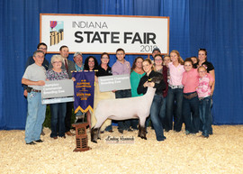 Izzy Clouse, Grand Champion, Indiana State Fair