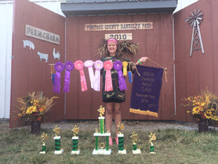Brianne Parker, Reserve Grand Champion Portage County Fair