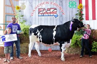 Haidyn Sattler, Grand Champion Finished Dairy Steer, Hancock County, OH.jpg