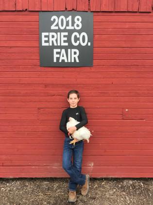 Zack Bouy, Reserve Grand Champion, Erie Co Jr. Fair, OH