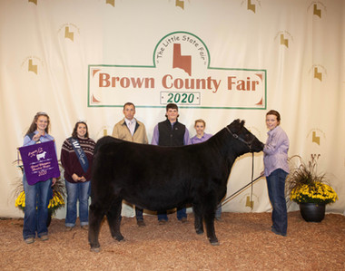 Darcy Howser, Grand Champion, Brown Coun