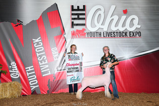 Mylee Shatto, Champion Southdown, Ohio Y