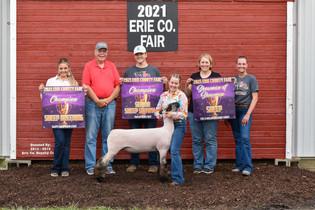 Reaganne Wilson, Grand Champion Breeding Ewe, Erie County Fair, OH.jpeg