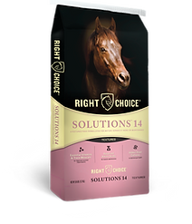 Solutions 14 Textured Horse Feed