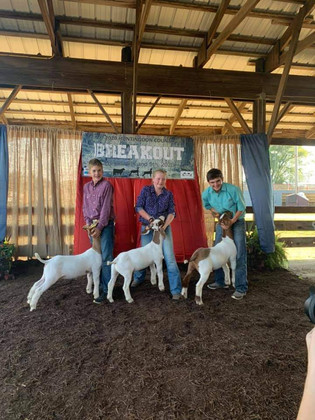 Taylor Heeter, Reserve Champion, Hunting