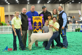 Caroline and Madelyn Groth, Grand Champion, NAILE Junior Southdown Show