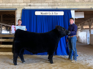 Carson Pahl, Reserve Grand, Wyandoot Cou
