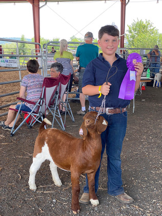 Weslet Coleman, Grand Champion, Augusta County Fair, VA.jpg