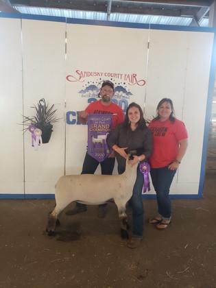 Madison Atkinson, Grand Champion Ewe, Sa