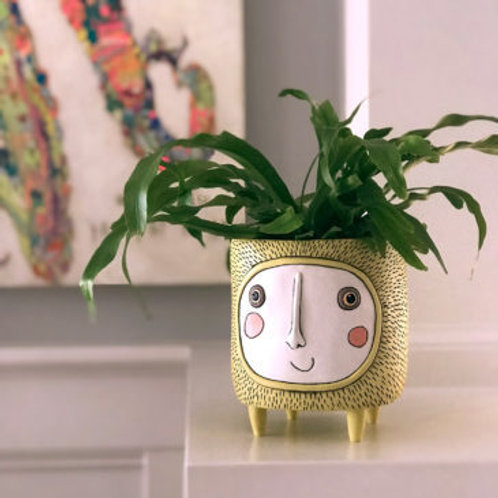 Sun Planter