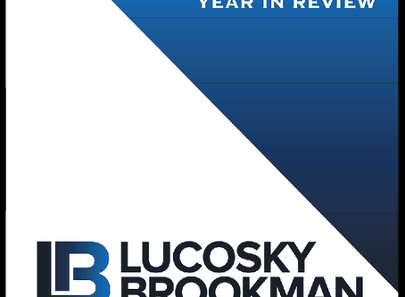 Lucosky Brookman Publishes 2017 YEAR IN REVIEW