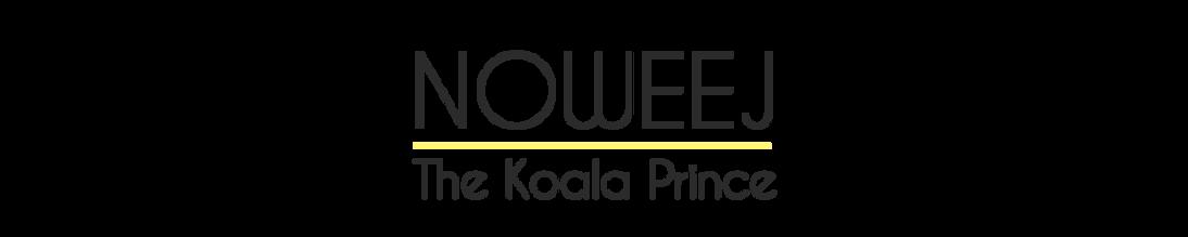 1_Koala.png