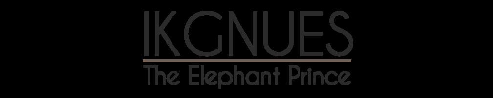 1_Elephant.png