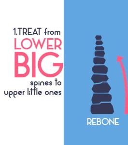 Rebone Clinic
