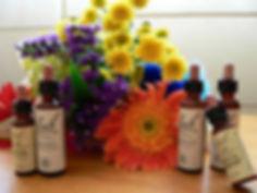flores-de-bach-1.jpg