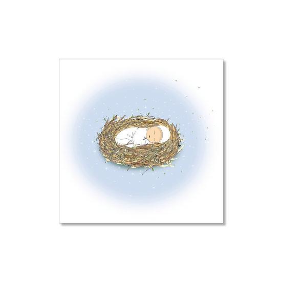 Faire-part petit nid bleu