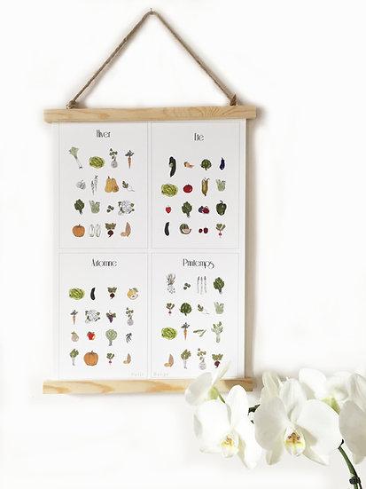 Affiche légumes de saison