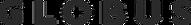 Globus_Logo_pos.png