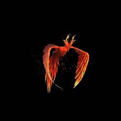 Phoenix_2048px (0-00-09-02)