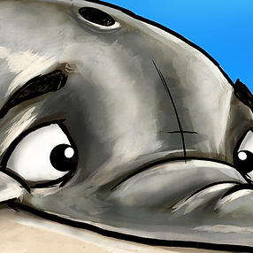 Splash Dolphin