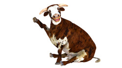 Cow_large__wave_pose