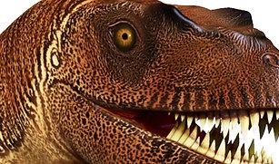 Warwick MArket Hall Museum 3D Dinosaurs
