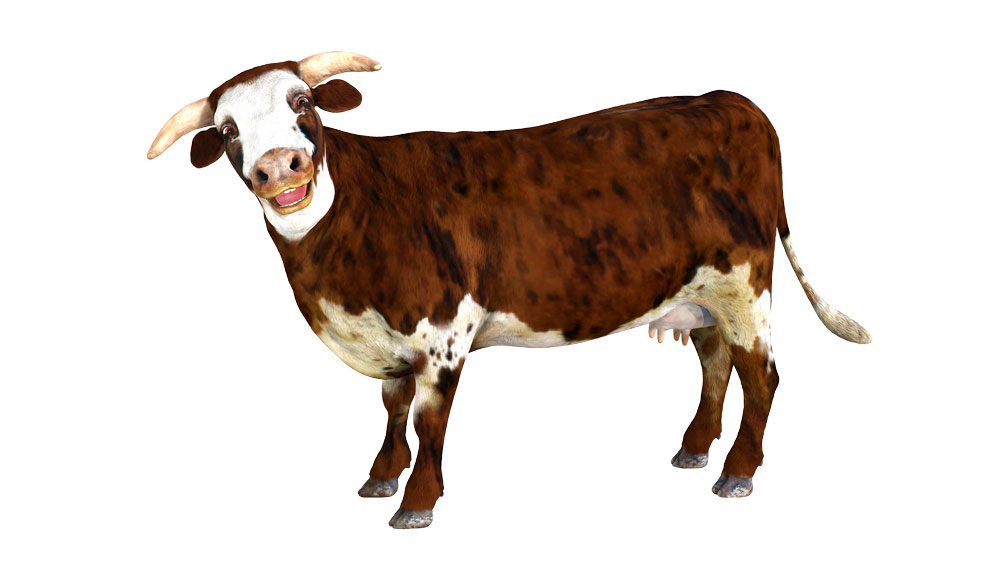 Cow_large__stand_pose