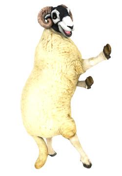 Sheep_large__dance_pose