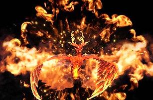 Phoenix Holofan