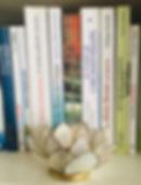 livres naturopathie.jpg