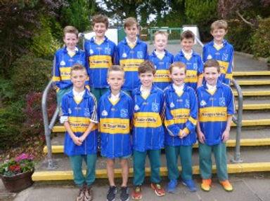 hurling team boys