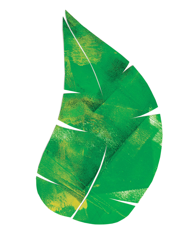 Palm Leaf 4