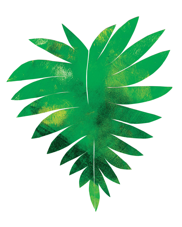 Palm Leaf 5