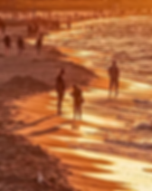 beach-4329694_1280.webp