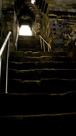 Omszałe schody prowadzące do mistycznego Borobudur.