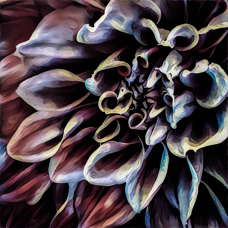 Stunning Floral