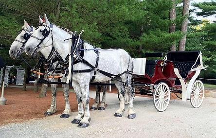 Horse-Drawn Wagon Rides