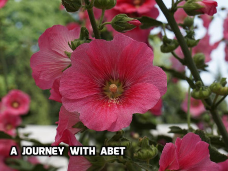 A Journey with ABET