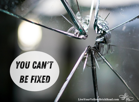 You Can't Be Fixed