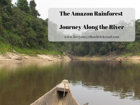 The Amazon: Journey Along the River