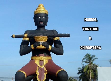 Nories, Torture & Chiroptera