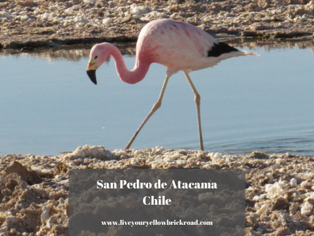 From the Amazon Rainforest to San Pedro de Atacama